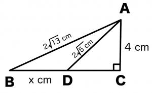 三平方の定理(ピタゴラスの定理) 計算問題 解き方