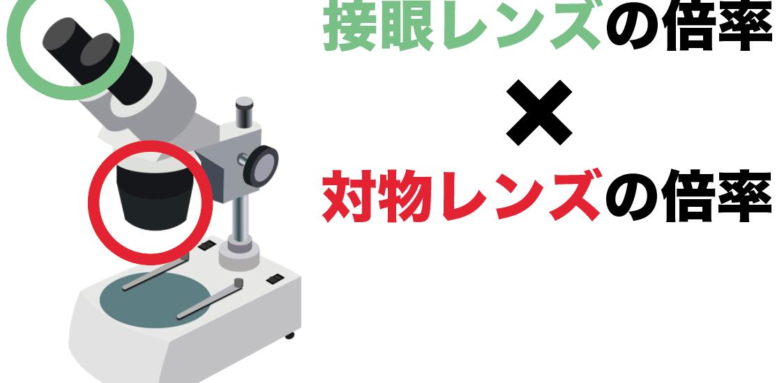 顕微鏡レンズ 倍率 計算方法 求め方