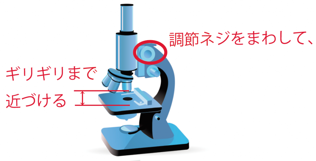 顕微鏡 使い方