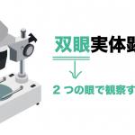 双眼実体顕微鏡 使い方