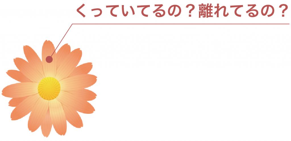 合弁花類と離弁花類  違い