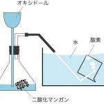 酸素 発生方法 集め方